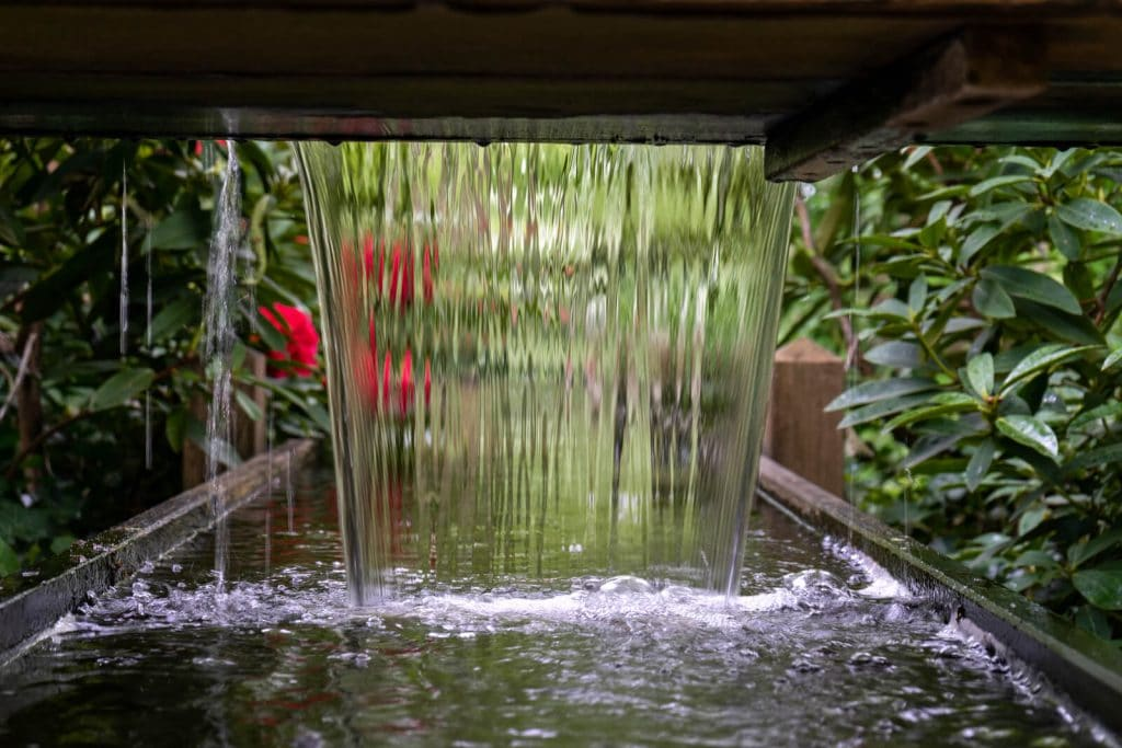 water feature maintenance ft. lauderdale